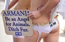 anioły przeciw Armaniemu
