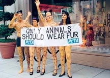 tylko zwierzęta powinny chodzić z futrze
